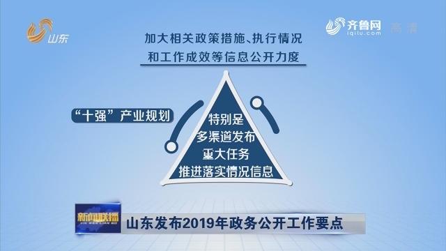 山东发布2019年政务公开工作要点