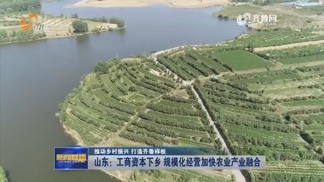 【推動鄉村振興 打造齊魯樣板】山東:工商資本下鄉 規?;洜I加快農業產業融合
