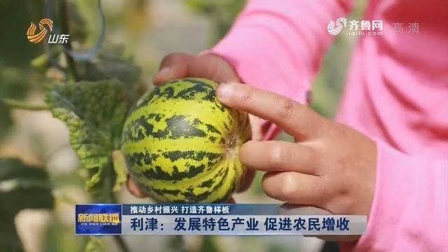 【推动乡村振兴 打造齐鲁样板】利津:发展特色产业 促进农民增收