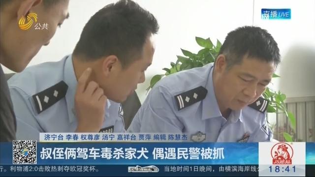 济宁:叔侄俩驾车毒杀家犬 偶遇民警被抓