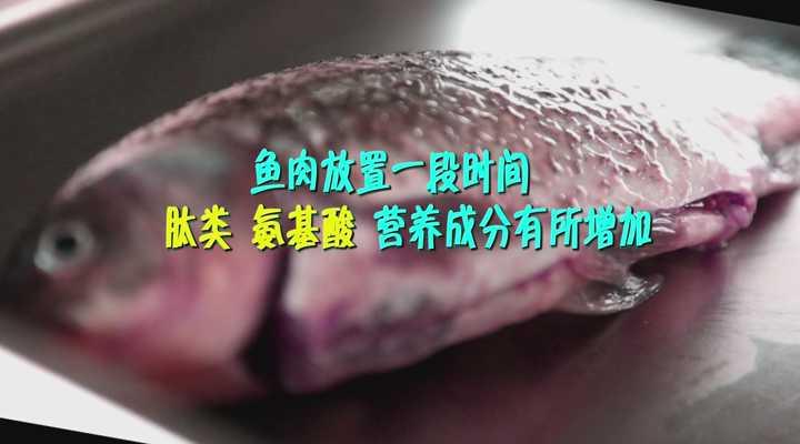 《生活大求真》:活鱼现杀现吃最好?大错特错!