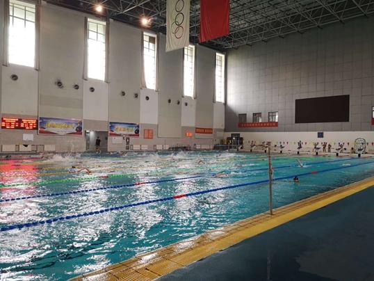 备战2019游泳世锦赛 山东健儿再出发