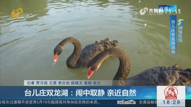 【闪电连线】台儿庄双龙湖:闹中取静 亲近自然