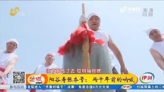 阳谷寿张夯号:两千年前的呐喊