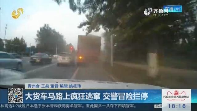 青州:大货车马路上疯狂逃窜 交警冒险拦停