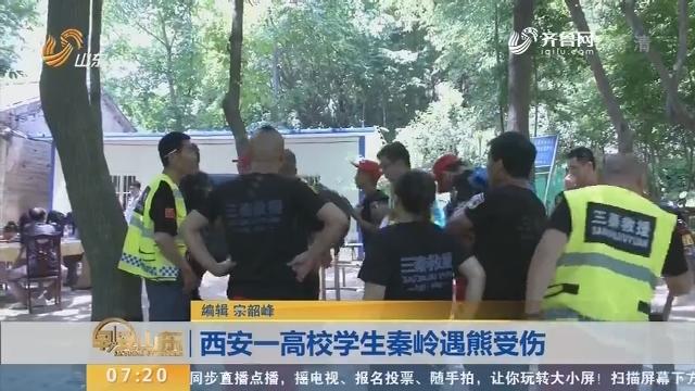 【闪电新闻排行榜】西安一高校学生秦岭遇熊受伤
