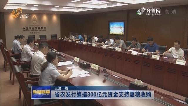 【三夏一线】省农发行筹措300亿元资金支持夏粮收购