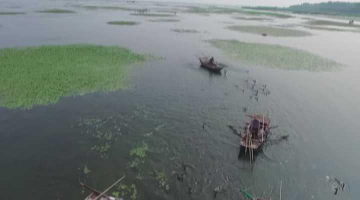 《民生实验室》:第三届中国鱼台龙虾节生态农产品展销会开幕