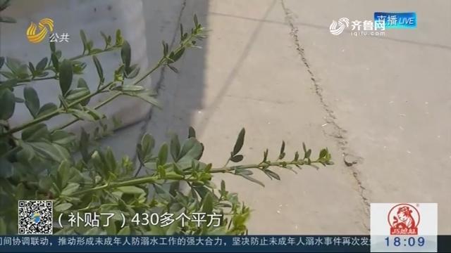 【问政山东·追踪】桓台城东村修路补贴不到位 督导组督促补发修路款