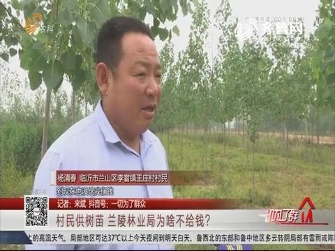 临沂:村民供树苗 兰陵林业局为啥不给钱?