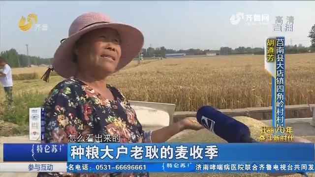 莒南:种粮大户老耿的麦收季