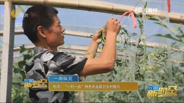 """利津:""""一村一品""""特色农业助力乡村振兴"""