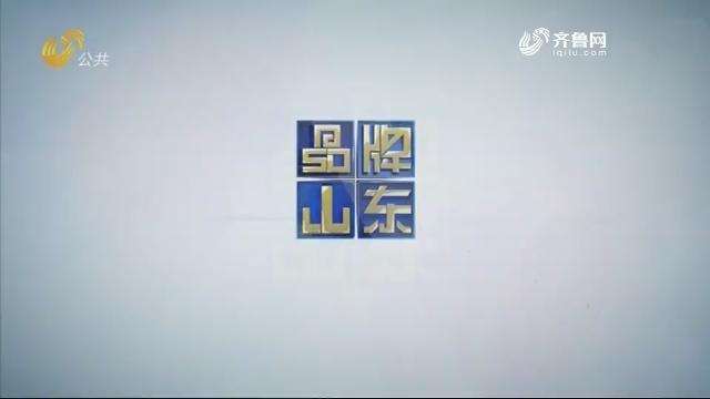 2019年06月16日《品牌山东》完整版