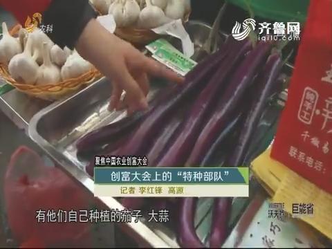 """【聚焦中国农业创富大会】创富大会上的""""特种部队"""""""