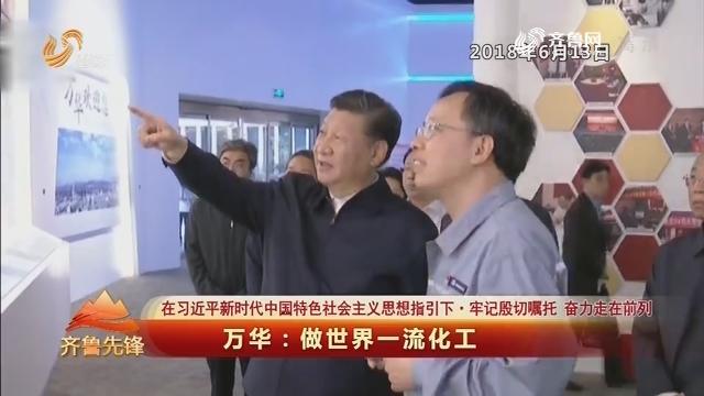 20190618《齐鲁先锋》:在习近平新时代中国特色社会主义思想指引下·牢记殷切嘱托 奋力走在前列 万华——做世界一流化工