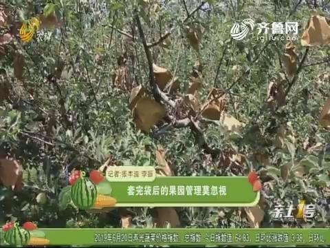 【农技一点通】套完袋后的果园管理莫忽视
