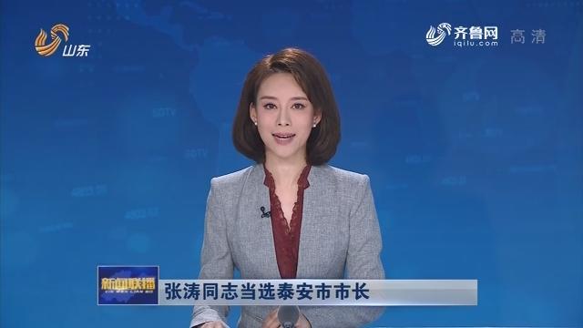 张涛同志当选泰安市市长