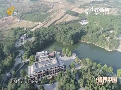 """20190621《旅养中国》:如果爱——双泉之""""罗曼蒂克"""""""