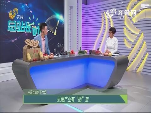 """20190623《总站长时间》:中国农业创富大会——果蔬产业有""""硒""""望"""
