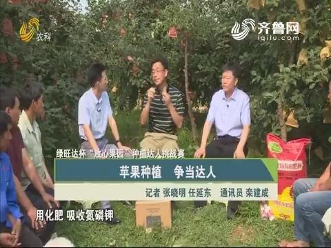 """20190630《总站长时间》:绿旺达杯""""放心果园""""种植达人挑战赛——苹果种植 争当达人"""