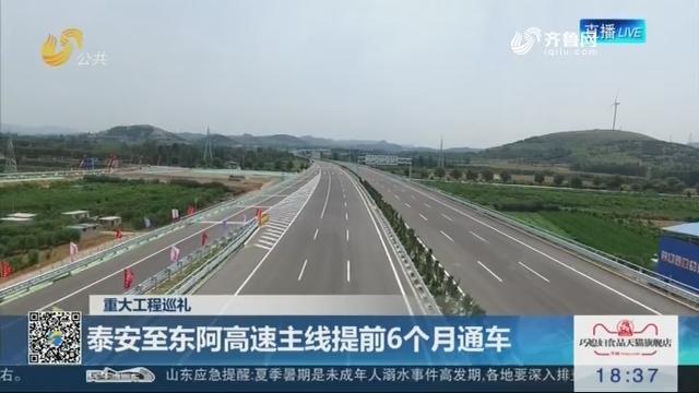 【重大工程巡礼】泰安至东阿高速主线提前6个月通车