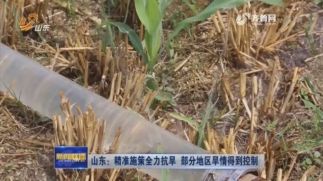 山东:精准施策全力抗旱 部分地区旱情得到控制