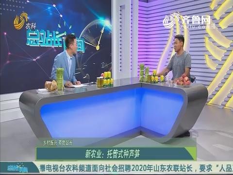 【乡村振兴 有我站长】新农业:托管式种芦笋