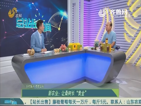 """【乡村振兴 有我站长】新农业:让桑树长""""黄金"""""""