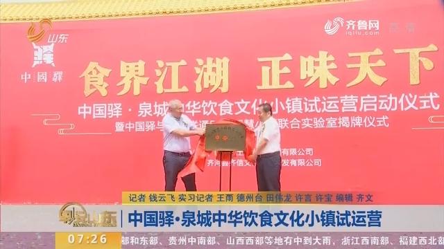中国驿·泉城中华饮食文化小镇试运营