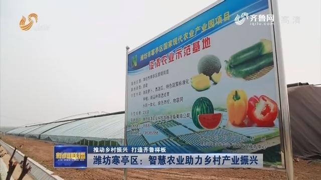 【推动乡村振兴 打造齐鲁样板】潍坊寒亭区:智慧农业助力乡村产业振兴
