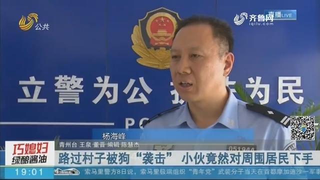 """青州:路过村子被狗""""袭击"""" 小伙竟然对周围居民下手"""