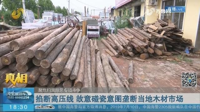 【真相】 聚焦扫黑除恶专项斗争:掐断高压线 故意碰瓷意图垄断当地木材市场