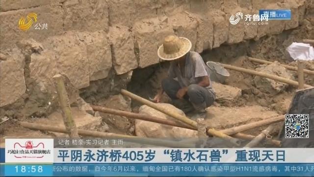 """平阴永济桥405岁""""镇水石兽""""重现天日"""