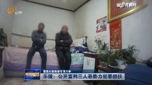 【聚焦扫黑除恶专项斗争】乐陵:公开宣判三人恶势力犯罪团伙