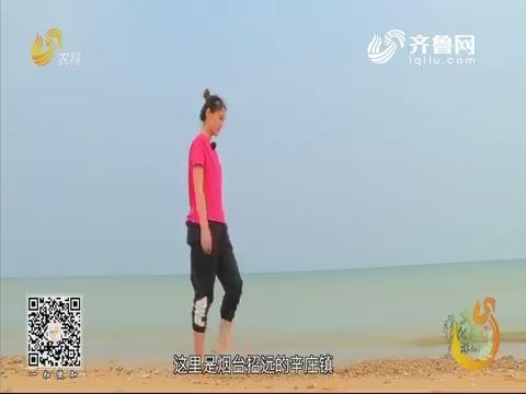 20190710《旅游365》:招远辛庄镇