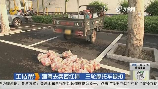 淄博:酒驾去卖西红柿 三轮摩托车被扣