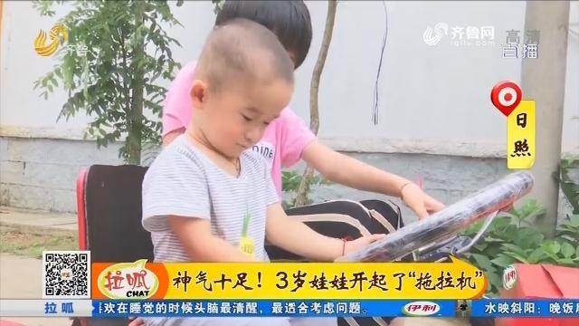 """日照:神气十足!3岁娃娃开起了""""拖拉机"""""""