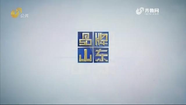 2019年07月14日《品牌山东》完整版