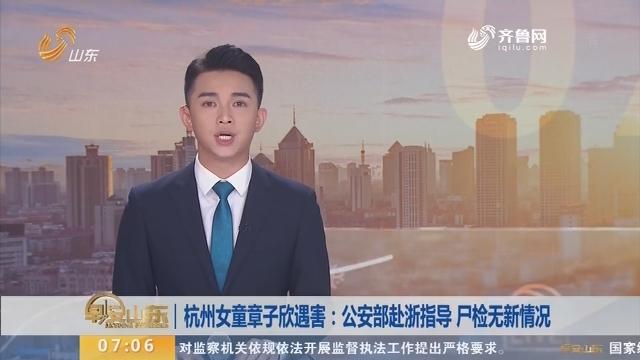 杭州女童章子欣遇害:公安部赴浙指导 尸检无新情况