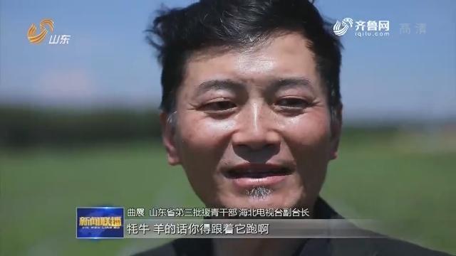 """曲展:奔跑在高原上的""""山东电视人"""""""