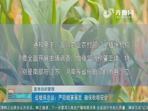 【夏季田间管理】省植保总站:严防蛾害暴发 确保秋粮安全