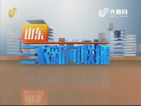 2019年07月19日山东三农新闻联播完整版