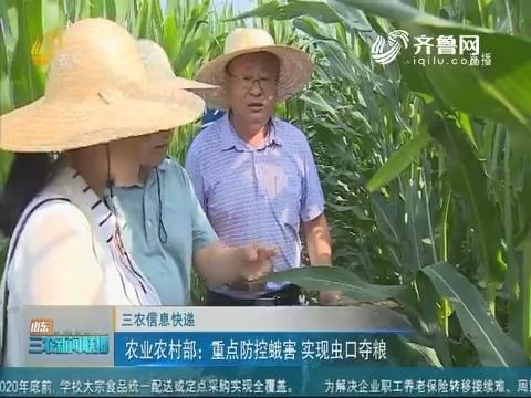 【三农信息快递】农业农村部:重点防控蛾害 实现虫口夺粮