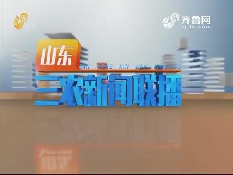 2019年07月20日山东三农新闻联播完整版