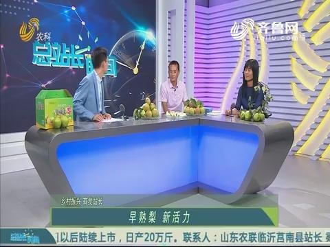20190721《总站长时间》:乡村振兴有我站长——早熟梨 新活力