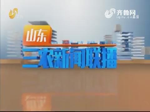 2019年07月21日山东三农新闻联播完整版