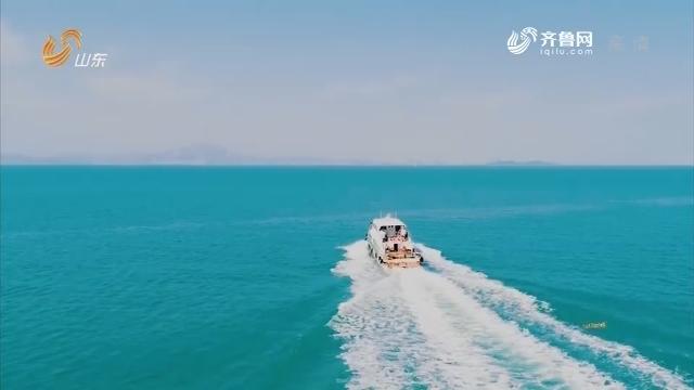 """20190721《群演公社》:海上游艇之旅 惊喜还是""""陷阱""""?"""