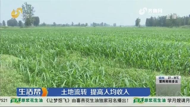 淄博:土地流转 提高人均收人
