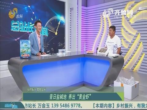 """20190728《总站长时间》:昔日盐碱地 养出""""黄金虾"""""""