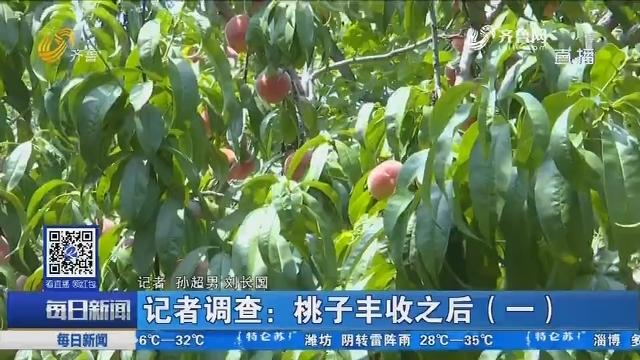 记者调查:桃子丰收之后(一)